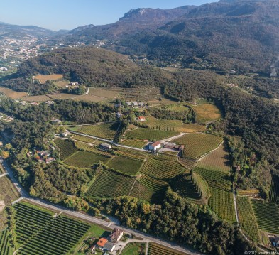 View of high altitude vineyards