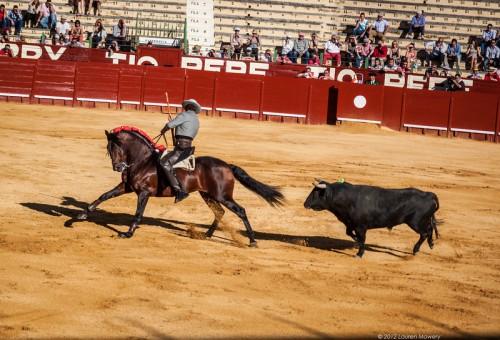 Bullfight1-L