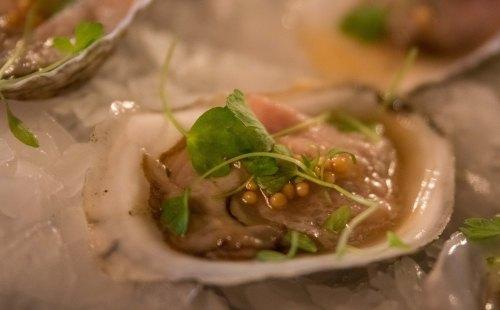 Oysterstarter