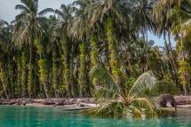 Lagoon like water around Isla Zapatillas, an island off Bocas del Toro